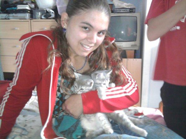 mi et mes chats