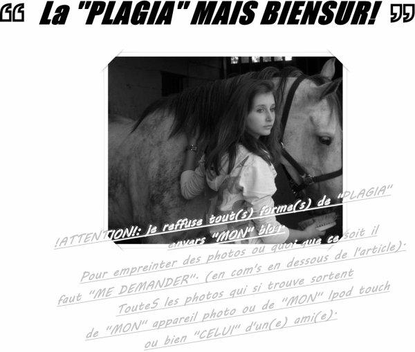 La ''PLAGIA''