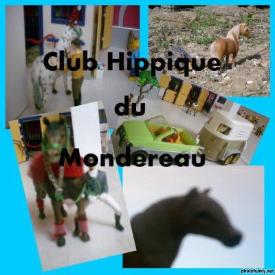 Le Club Hippique du Mondereau