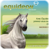 Equideow