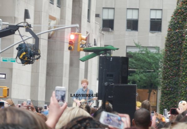 Review du ??.??.14 , Ed Sheeran au Today Show, NYC.