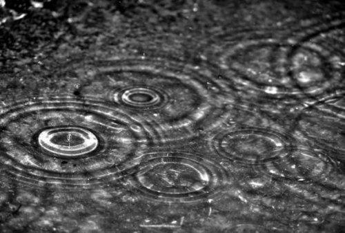 Larmes de pluie