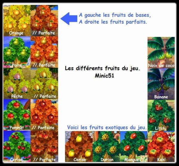Les différents fruits