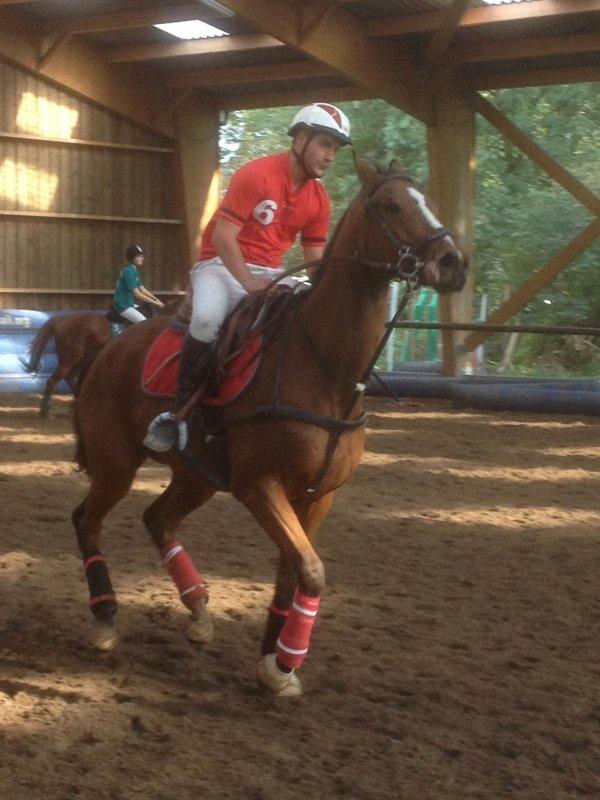 """le week end est maintenant réservé aux enfants: Dimanche, Ludo jouait un match avec son nouveau cheval """"Biloute"""", bientôt on aura à nouveau le plaisir de voir nager Blandine qui continue ses études en France et est sous licence du Lille Université Club"""