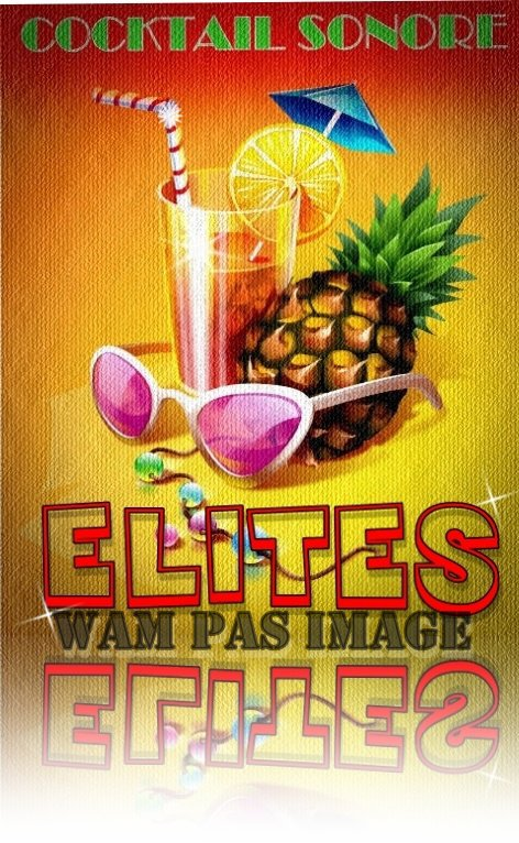 "L'album "" COCKTAIL SONORE "" du groupe ""ELITES"""