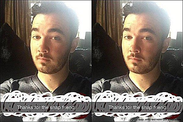 Instagram | Waffle le chat a posté ces photos sur son compte.