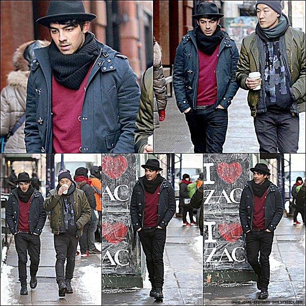 Le 17 Février 2015 | Joe et son ami ont fait une petite balade dans New York.