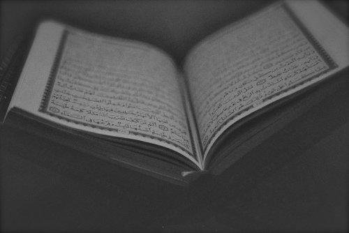 Une fleur renaît aux rayons du soleil, comme le Coeur renaît au son du Coran ♥