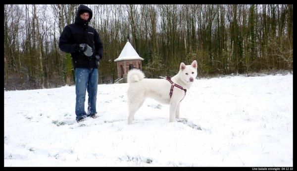 La neige 04 12 10