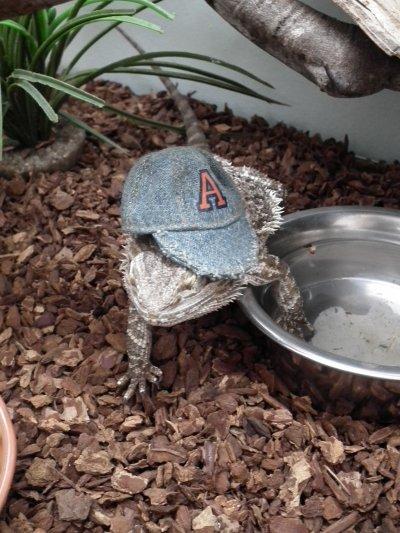Lola avec chapeau