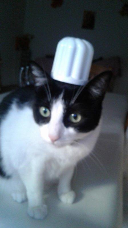 Reconversion en chef cuisinière