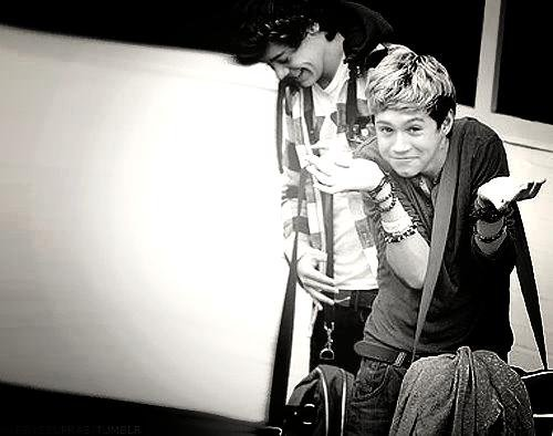 Niall Horan est tout simplement parfait.