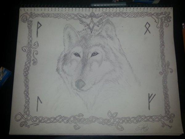 Wolf !