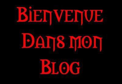 BIENVENUE DANS LE BLOG DE LUC415