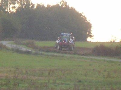 semi de blé (2/11/2011)