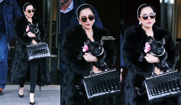 22/12/14   ▬ Lady Gaga toute belle,  a été vue sortant de son appartement à  « New York » . C'est un Top!