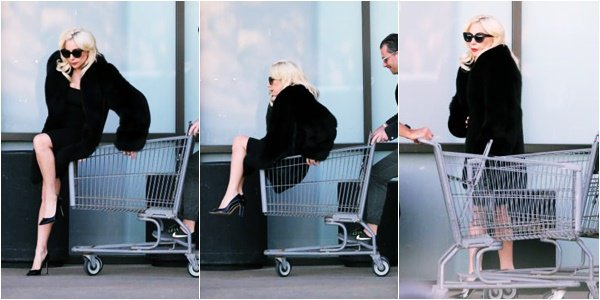 21/12/17   ▬ Lady Gaga a été vue faisant ses courses à  « Malibu  » à Los Angeles .  C'est un Top!