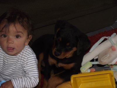 mon fils et son nouveau compagnon de jeu