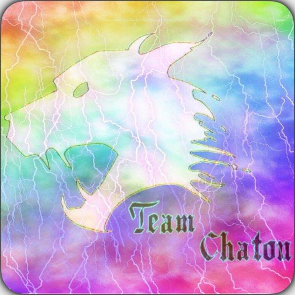 La Team Chaton !!!!