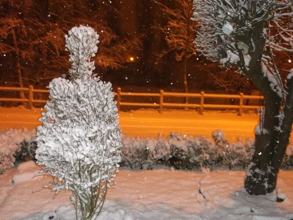 nous voila sous la neige