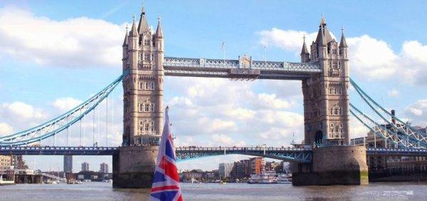 - Study abroad -
