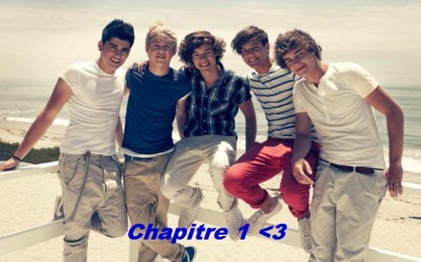 Chapitre 1 <3
