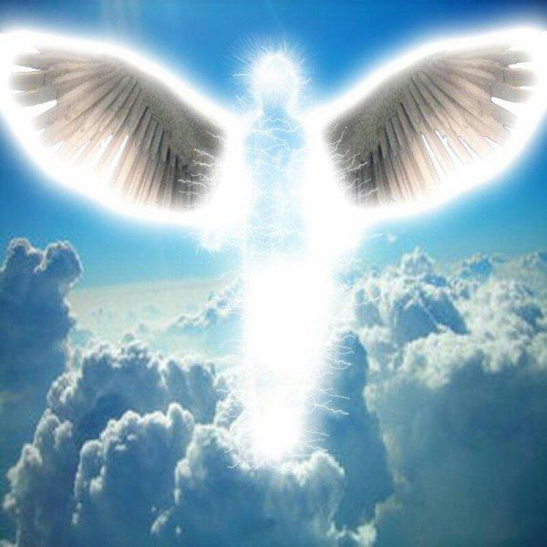 Parfois J'aimerais Etre Un Ange