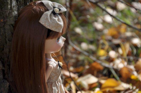 Une chevelure de feu pour Clara ♥ (2)