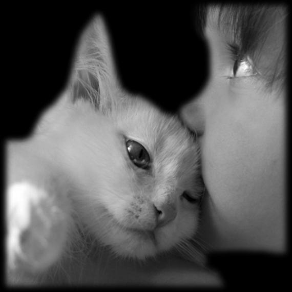 l enfant et le chat