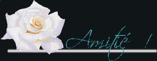 (u)(u) AMITIE  D UNE FEMME (u)(u)