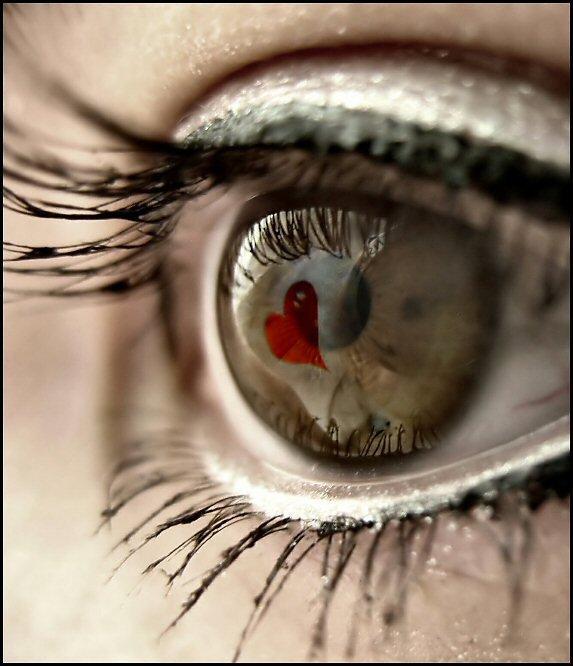 Kelli Wolfe - Eyes (feat. Barry & Maurice Gibb)  (u) suis ton coeur pour ton visage rayonne  durant toute ta vie (u)