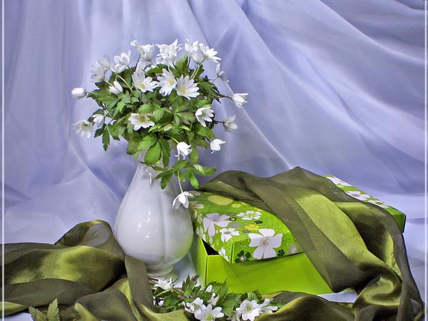 (u) bonjour a tous  (u)  :::::  j avais cette fleur  (u)