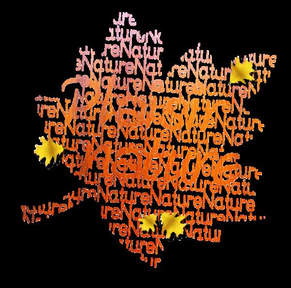 (u)  beauté d automne  (u)