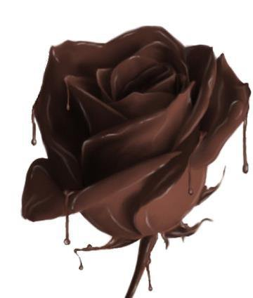 (u) Bonjour tout en chocolat (u)(u) Bon Samidi (u)