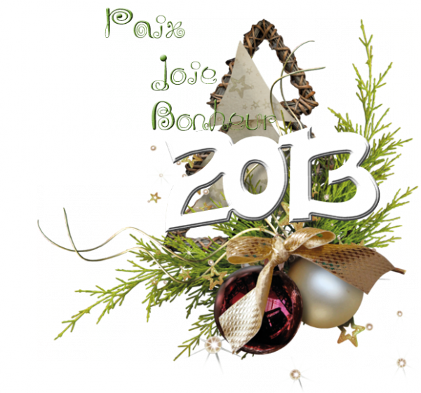 HAPPY N£W Y£AR (u)  2013  (u) BON R£V£ILLON (u) BONN££ ANN££ 2013 ***
