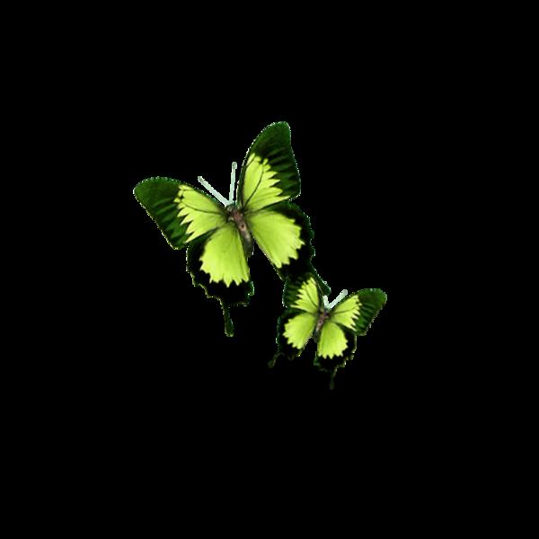 (u) Il y a des choses dans la vie qui ne sont pas faites pour durer, parfois le changement n'est pas celui qu'on veut, mais parfois c'est exactement ce dont on a besoin. (u)