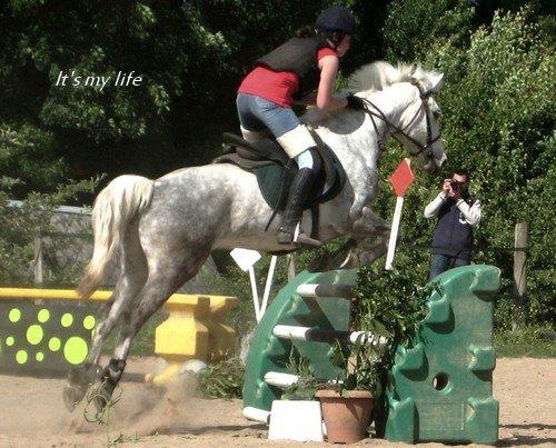 « Le bonheur est entre les oreilles du cheval » ♥