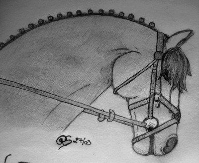 Comme promis, un dessin de chewal :3