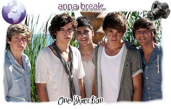 Après les Allemands des Tokio Hotel et les Américains des Jonas Brothers, place au Anglais : les One Direction !