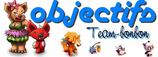 Objectifs de Team-bonbon