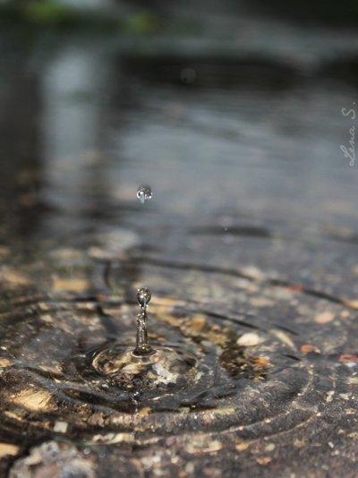 Pluie d'Automne...
