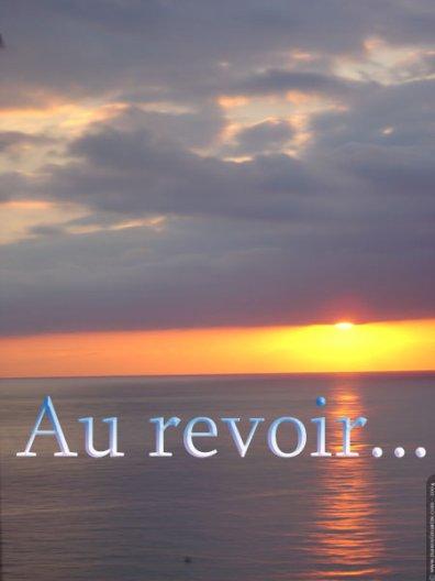 D-DJO: Au revoir   (2012)