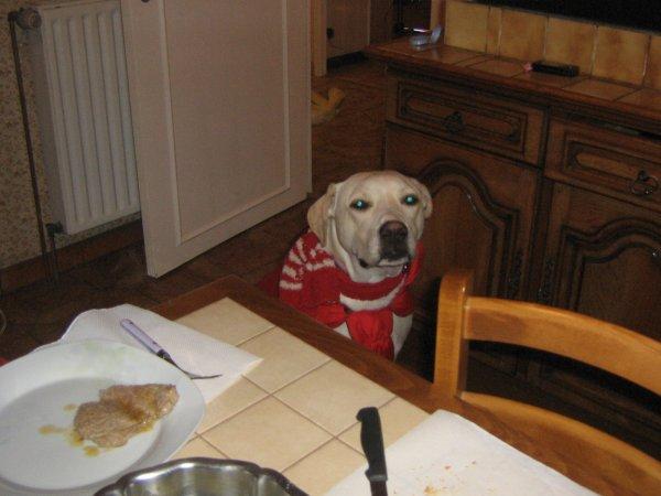 Mon manteau rouge ... je le déteste ... Maiis a ce qu'il paraiit je suis chou aveiic