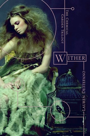 Wither (Ephémère)
