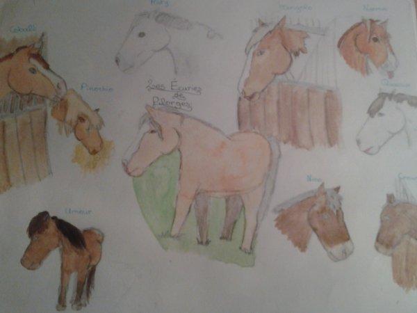 Quelques chevaux de mon club
