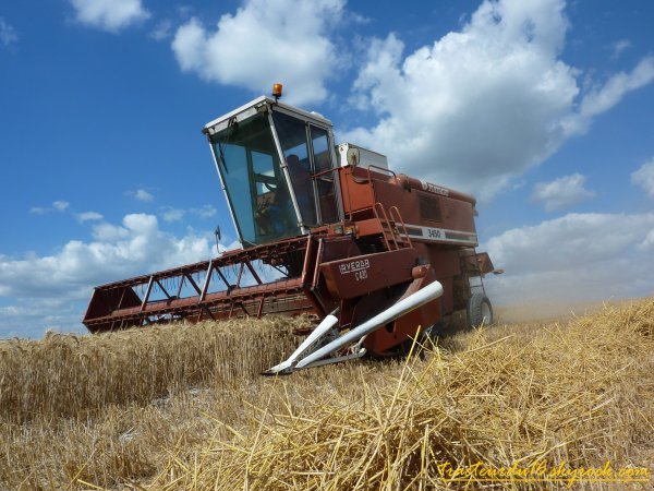 moisson de blé tendre 2010 ( 27 juillet 2010 )