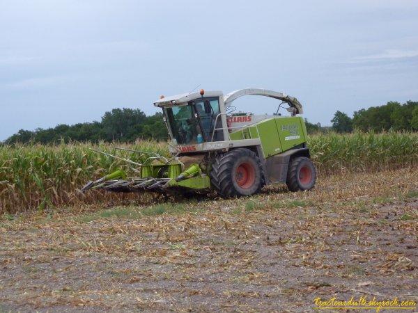 ensilage de maïs 2010 ( 23 aout 2010 )