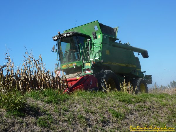 moisson de maïs ( 12 octobre 2010 )