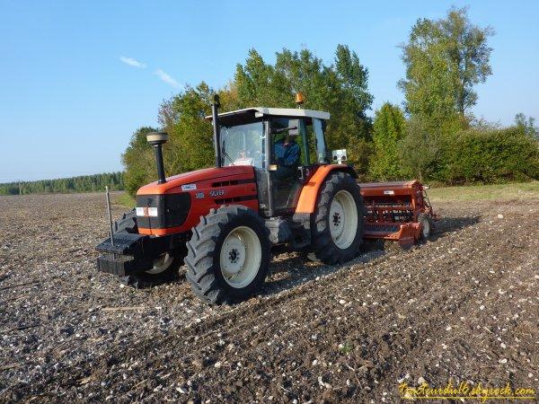 semis de blé et roulage 2010 ( 15 octobre 2010 )
