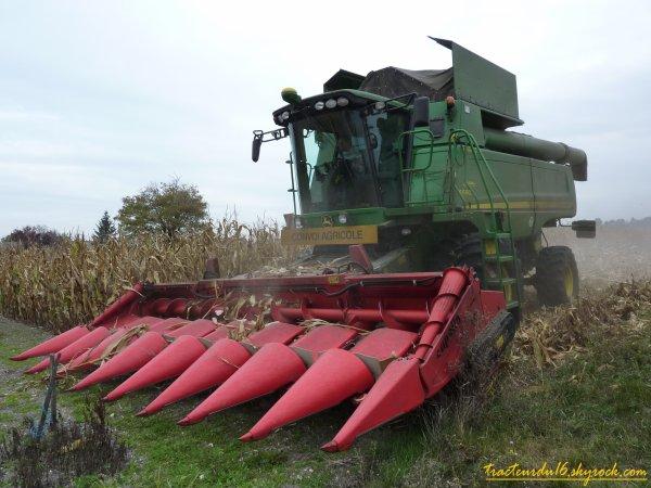 moisson de maïs 2010 ( 16 octobre 2010 )